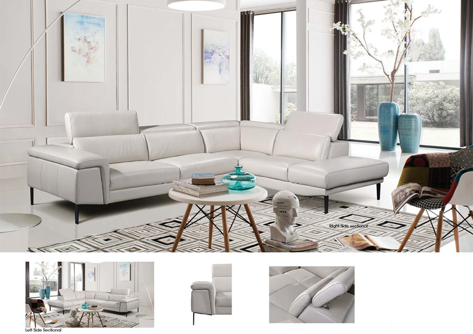 1511 Sectional Image