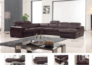 2146 Sectional Image